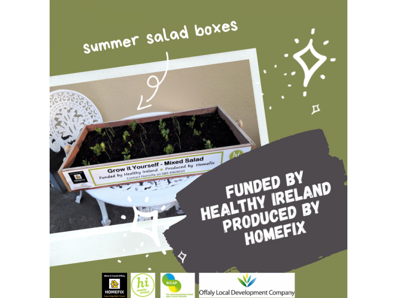 summer-salad-boxes